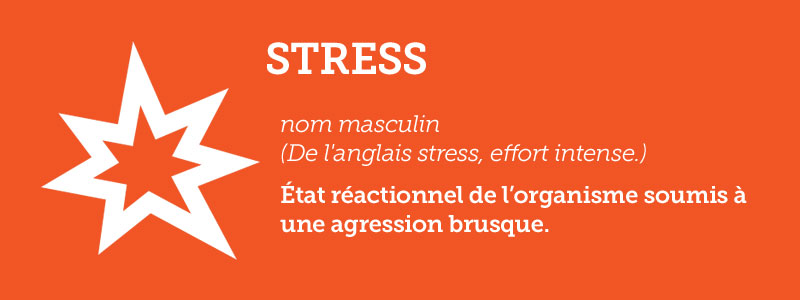 Dixionnaire:  Stress